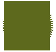 New Plant Icon